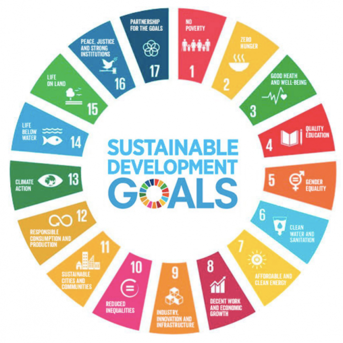 Diagram showing the 17 Sustainable Development Goals